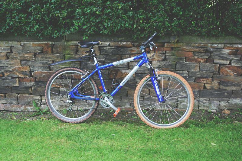 Bike_week_38