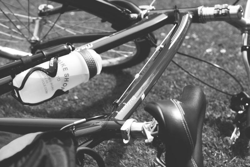 Bike_week_10