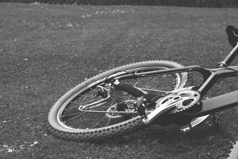 Bike_week_14