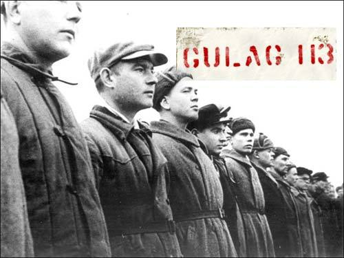 Gulag113
